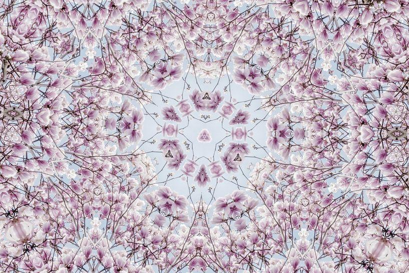 Magnoliabloesem lentebloesem caleidoscoop van Jessica Berendsen