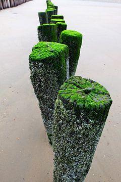 Golfbrekers op het strand. von Marian Klerx