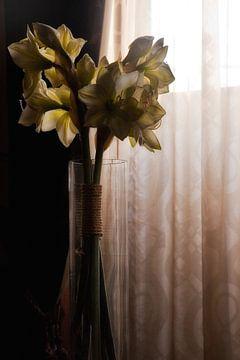 Blumen in der Vase von Jos Verhoeven