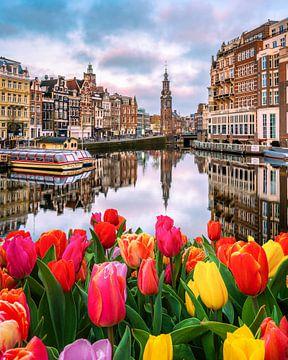 Tulpenmanie in Amsterdam von Bas Banga