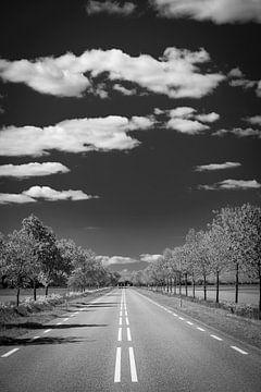 Lange rechte verlaten weg met bomen in zwart en wit van Sjoerd van der Wal