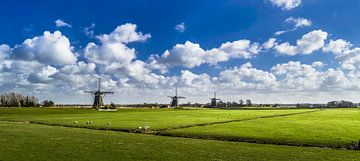 Die drei Mühlen, Panorama von Ricardo Bouman