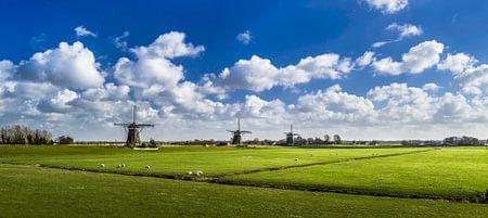 Die drei Mühlen, Panorama von Ricardo Bouman | Fotografie