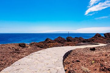 Atlantic Sea coast on the canary island Tenerife van