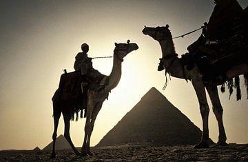 Kamelen bij de piramiden van Frans Lemmens