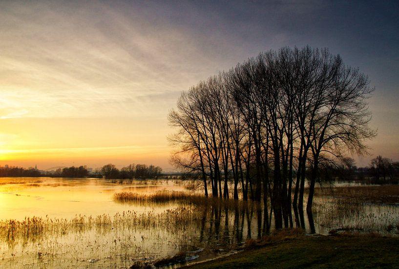Zonsondergang in de Ooijpolder (Nijmegen) van Cocky Anderson