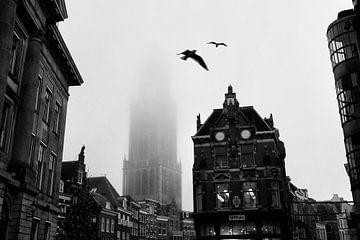 Domtoren Utrecht met vogels in de mist van
