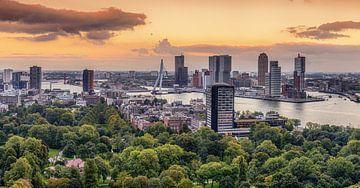 Rotterdam von Herman van den Berge
