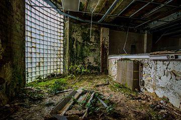 De groene kamer. van Demian Otten