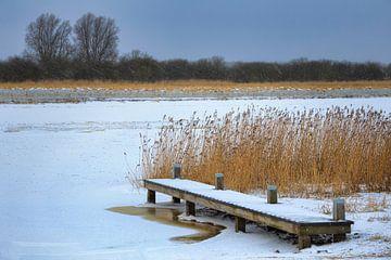 Steg zwischen Schilf mit Eis und Schnee von Peter Bolman