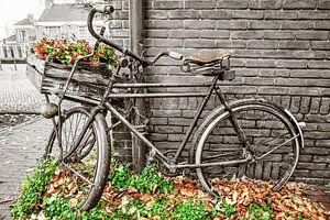 Ingekleurde transportfiets in Dalfsen van Willem Visser