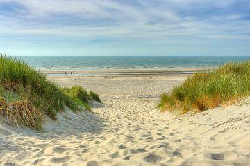 Weg zum Strand von Michael Valjak