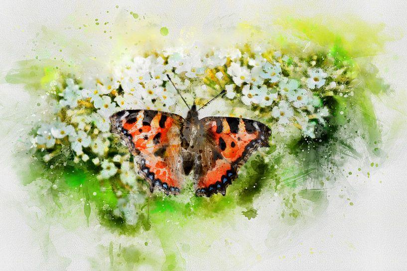 Der Schmetterling von Claudia Evans