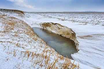 Verlaten winters landschap van Peter Bolman