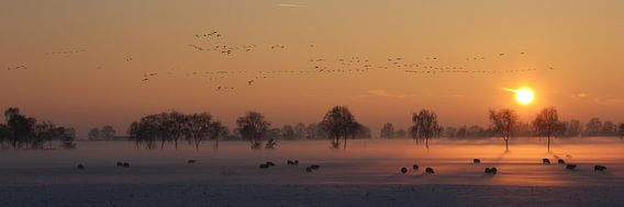 Winter zonsondergang van Jan van Kemenade