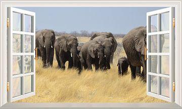 Een adembenemend uitzicht op langslopende olifanten van Bert Hooijer