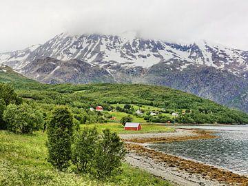Summer on Lyngenfjord van Gisela Scheffbuch