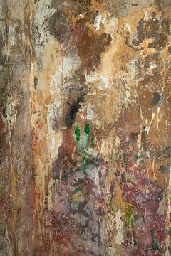 Kleurrijk historisch pleisterwerk von Tonko Oosterink