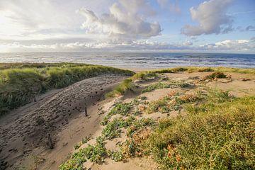 Beach, Sand and Waves sur Dirk van Egmond