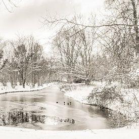 Winter im Park Buitenoord von Ad Van Koppen