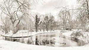 L'hiver au parc Buitenoord sur Ad Van Koppen