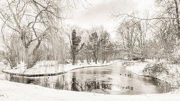 Winter in Park Buitenoord van Ad Van Koppen
