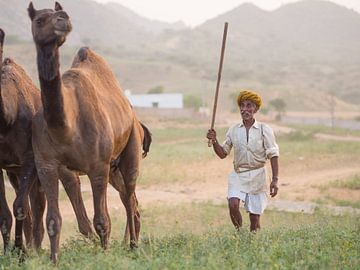 Kamelenhandelaar in Pushkar, India van Teun Janssen