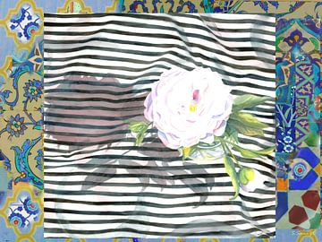 Peony Stripe Love van Seema Zaidee