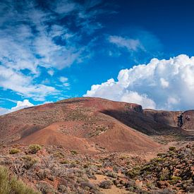 Vulkanlandschaft auf Teneriffa von Martin Wasilewski