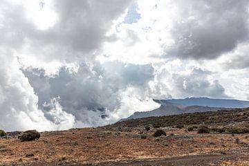 Op wolkhoogte in Tanzania van Mickéle Godderis