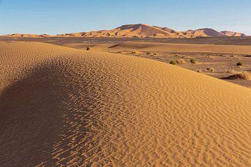 woestijnduin achtergrond op een blauwe hemel. Bergen en heuvels van gekleurd zand, Sahara Afrika. van Tjeerd Kruse