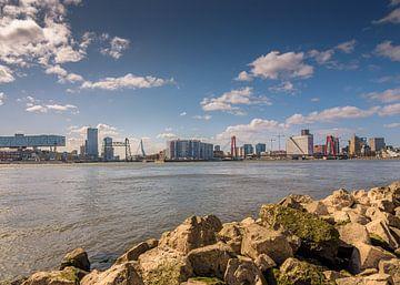 Das sonnige Rotterdam von Patrick Herzberg