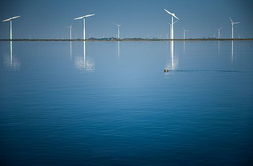 Nederlandse windmolens bij blauw water