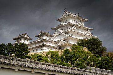 Himeji Castle, Japan van Marcel Alsemgeest
