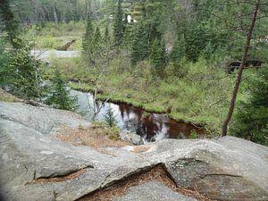 Algonquin National Park Canada