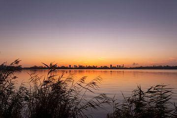 Prachtige zonsondergang over de Kralingse Plas met riet