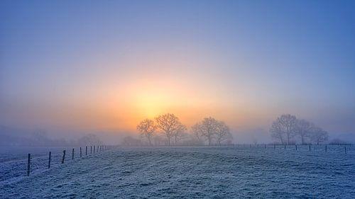 Winterlandschap met bomen tijdens zonsopkomst van