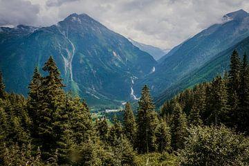 Waterval in de bergen in Oostenrijk van Wilke Tiellemans