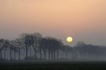 Atmospheric sunrise above a small rural avenue van wunderbare Erde