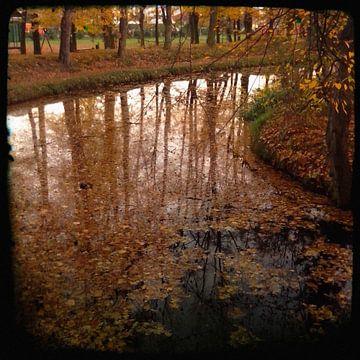 Herfst III van Kuba Bartyński