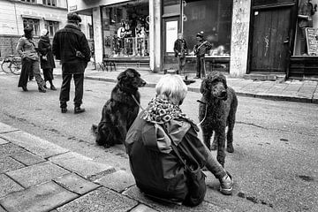 Straatmuzikanten in Stockholm van Arno Marx