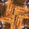 Bark 01 van Jeroen van der Meij thumbnail