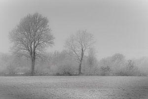 Winter landschap van Teo Goudriaan