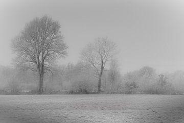 Die Winterlandschaft von Teo Goudriaan