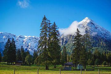 Schneebedeckte Berge und grüne Wiesen von S Amelie Walter