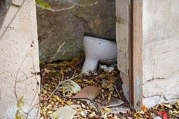 alter Gebäudeteil mit Toilette in Halle Saale in Deutschland von Babetts Bildergalerie