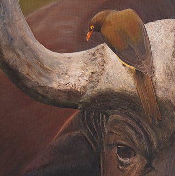 Büffel afrikanisch von Russell Hinckley