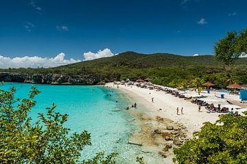 Curacao, Grote Knip sur Keesnan Dogger Fotografie