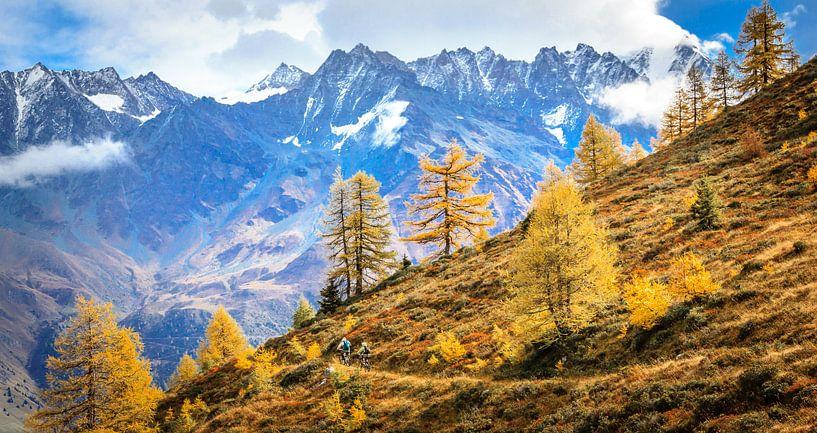 Mountain Bikers in The Swiss Alpes von Bas Koster