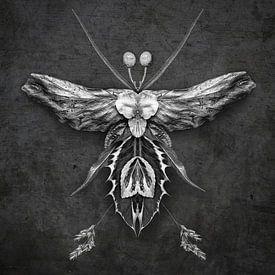 Fantasy creature 02 van Everards Photography